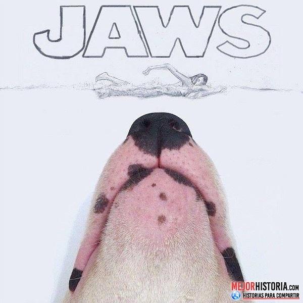 perro jaws