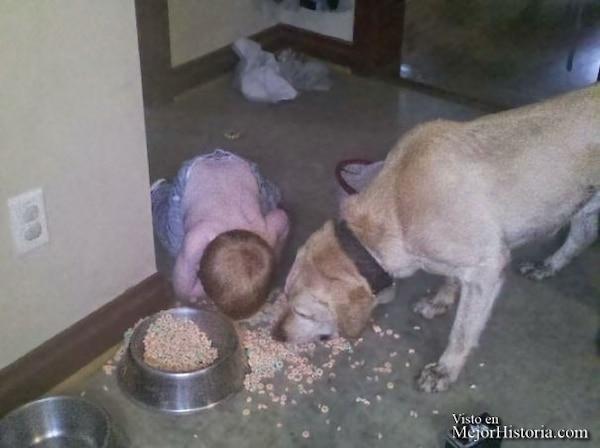 niño con perro